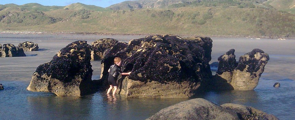 Exploring rock pools at the beach