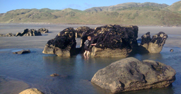 Exploring the rock pools on the coast